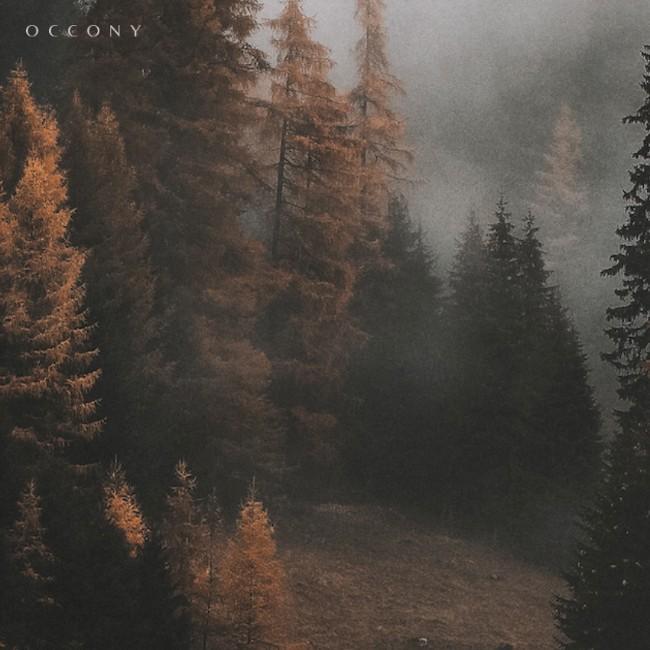Occony